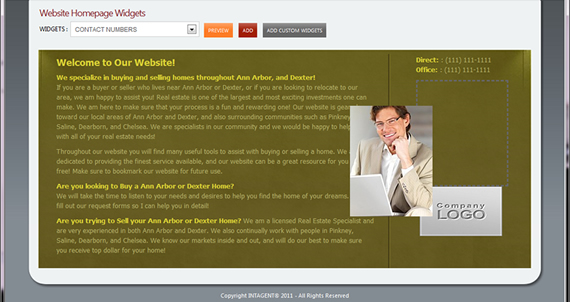 Intagent Website Homepage Widgets