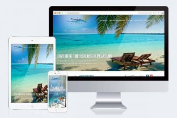 website-desin
